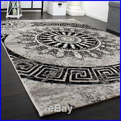 Large Grey Rug Carpet Classic Modern Pattern Circles Ornaments Luxury Style