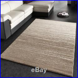 Small Extra Large Rug Modern Soft Carpet Beige Carpets Living Dining Area Mats
