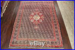 Vintage Animal Pictorial Hunting Design Kashmar Area Rug Hand-Knotted Wool 10x13
